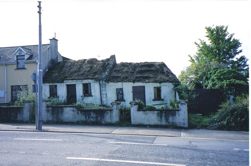 Thatch in the City