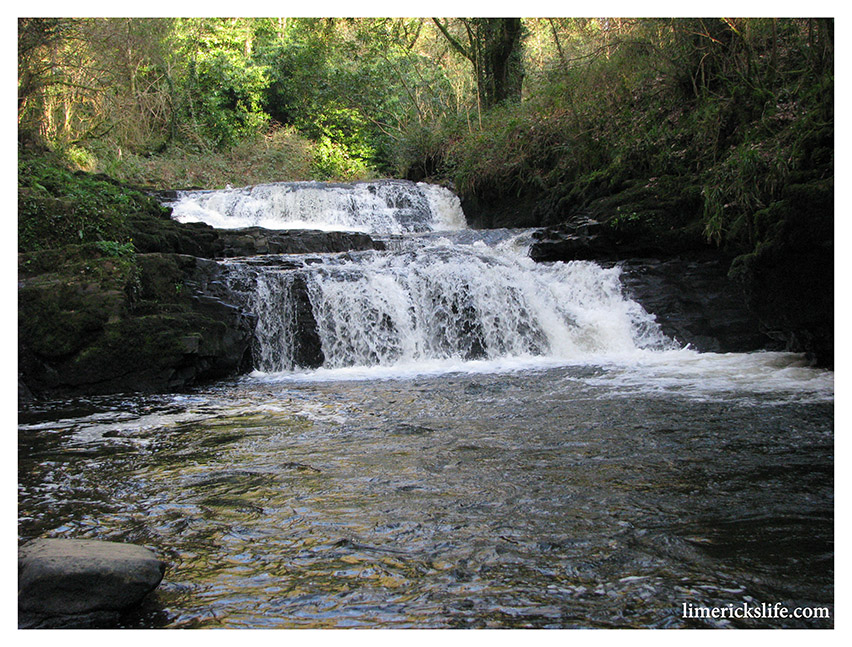 The Clare Glens video from 10 August 2010
