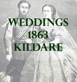 Kildare Weddings 1863