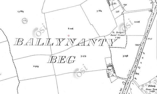 A Tale of Destructive Fairies of Ballynanty Beg in 1951.