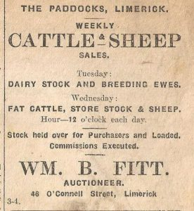 cattle and sheep advert 1920s