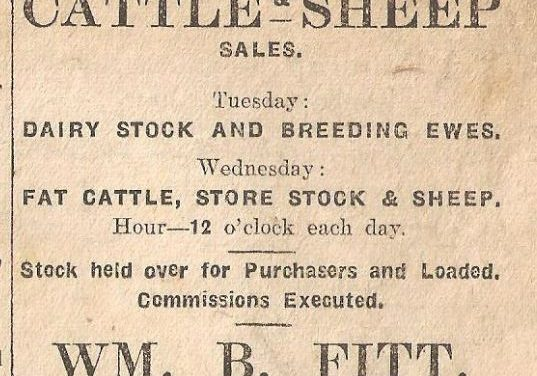 Weekly Observer adverts from Newcastle West in 1921